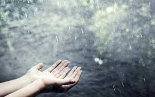 Сонник — Дождь