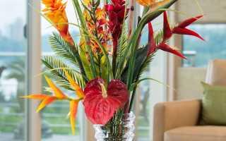 Можно ли держать искусственные цветы в доме, какие в этом плюсы и минусы? трактовка примет