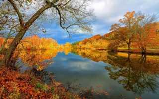 Народные приметы октября
