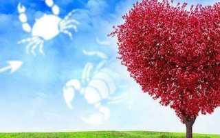Как можно вернуть былую страсть и любовь мужа: заговор на гармонизацию отношений
