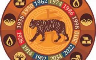 Год тигра по китайскому гороскопу: кто они