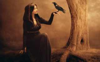 К чему снится ведьма: толкование сна по различным сонникам