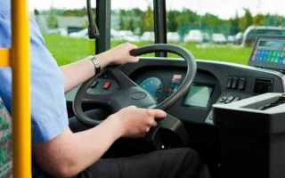 Что значит, если приснился автобус: нюансы расшифровки