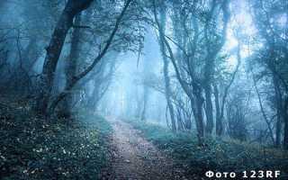 Синонимы к слову сильный туман
