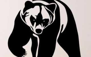 Медвежий коготь: особенности оберега для защиты от злых сил