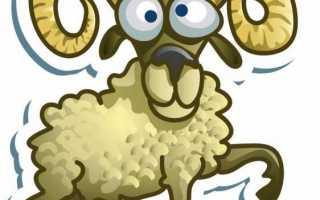 Рожденные в год овцы: какие года рождения, характеристика знака